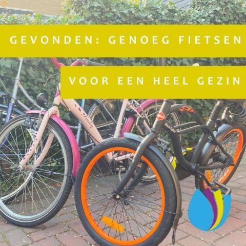 foto van drie fietsen tegen een schutting begroeid met klimop en de tekst ´gevonden: genoeg fietsen voor een heel gezin´